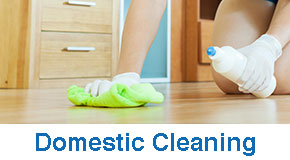 donestic cleaning bedford